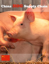 China Swine & Pork Products - Industry Supply Chain Evaluation