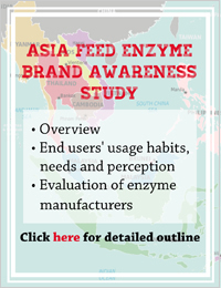 Southeast Asia and India Enzyme Market Report