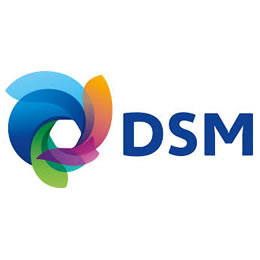Dutch DSM announces 'organisational, operational' changes