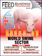 A flat, divergent world swine