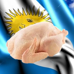Projections vs. Reality: An export-driven crisis for Argentine broilers