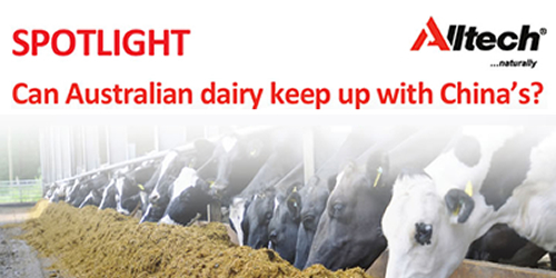 Can Australian dairy keep up with China's?