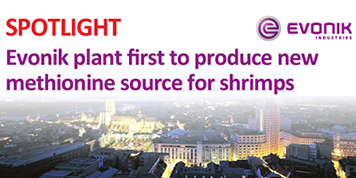 Evonik plant first to produce new methionine source for shrimps