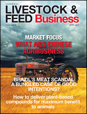 What ails Chinese agribusiness?