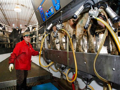 Canada blames US for its dairy sector 'woes'