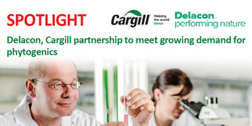 Delacon, Cargill partnership to meet growing demand for phytogenics