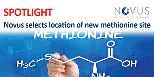 Novus selects location of new methionine site