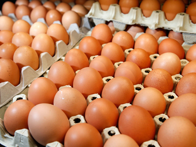 Tainted eggs now in 40 countries, says EU