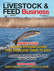 Salmon hyperinflation: Pink fish flesh turns to gold