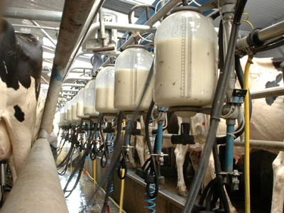 GMO-free claims in German dairy launches outpace European average