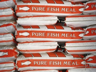 China Fishmeal Weekly: Cautious mood limits sales, holds down prices (ended Aug 10, 2017)