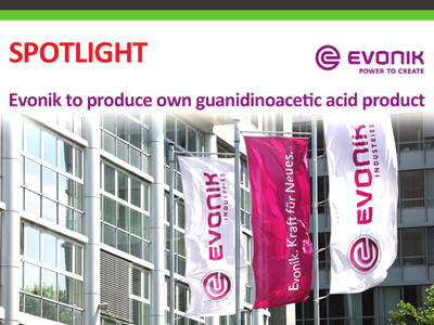 Evonik to produce own guanidinoacetic acid product