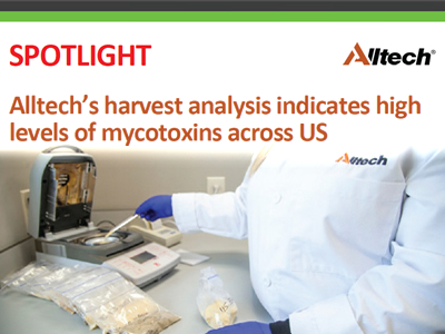 Alltech's harvest analysis indicates high levels of mycotoxins across US