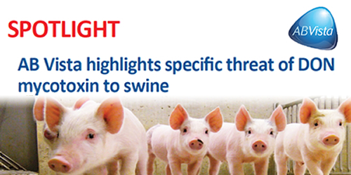AB Vista highlights specific threat of DON mycotoxin to swine
