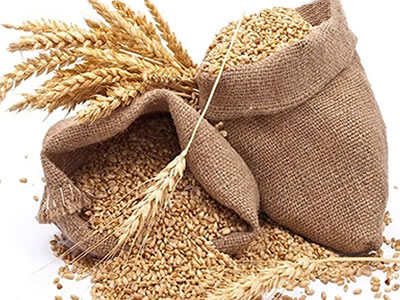 Indonesia to become world's biggest wheat importer, while Russia biggest exporter