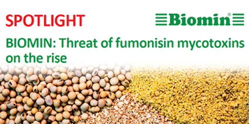 BIOMIN: Threat of fumonisin mycotoxins on the rise