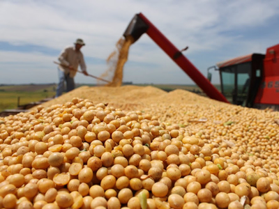 Brazil soy production estimate for 2017-18 revised higher, corn lower