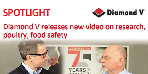 Diamond V releases new video on research, poultry, food safety