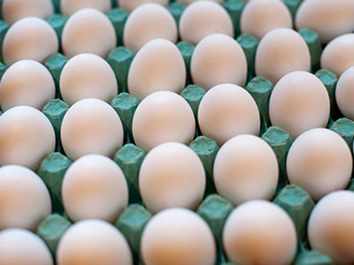US to amend egg inspection regulations