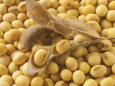 China's winning hand: Turmoil in US soy markets. Good news for Latin America