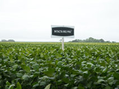Bayer's Intacta RR2-PRO soybeans lead to reduced gas emissions