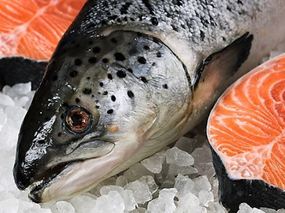 Progress, pitfalls and price inflation in the world salmon market