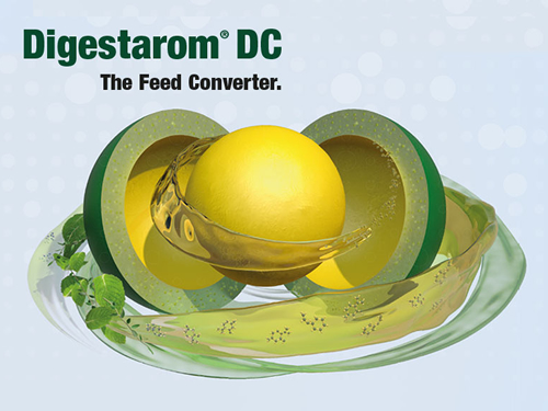 BIOMIN's Digestarom DC gets positive opinion from European Food Safety Authority
