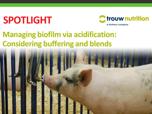 Managing biofilm via acidification: Considering buffering and blends