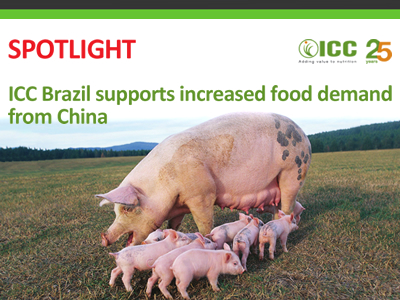 ICC Brazil supports increased food demand from China