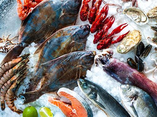 eFeedLink - Communities - Aquaculture