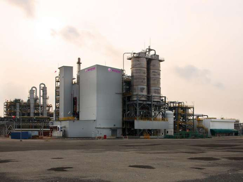 Evonik opens 2nd methionine plant in Singapore