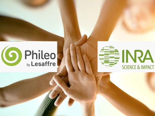 INRA and Phileo sign new partnership agreement on animal nutrition and health