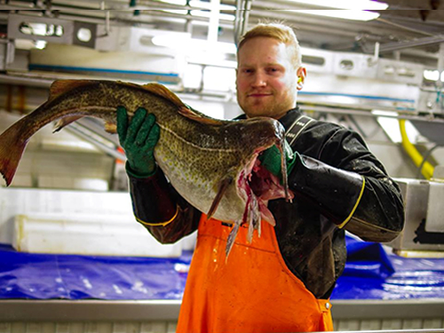 Norwegian seafood export value up 8% in first 9 months; salmon posts biggest growth