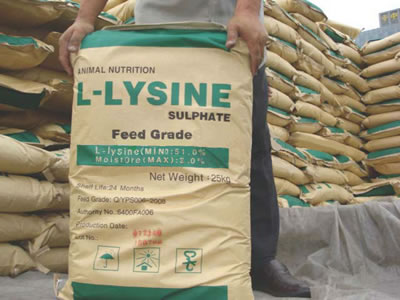 China Lysine Weekly: Prices consolidate lower (week ended Sep 16, 2019)