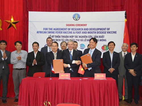 Ceva to help Vietnam develop new vaccines for ASF, FMD