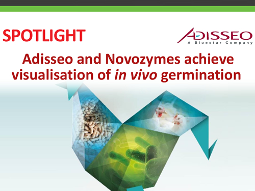 Adisseo and Novozymes achieve visualisation of in vivo germination