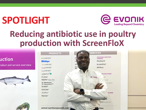 Reducing antibiotic use in poultry production with ScreenFloX